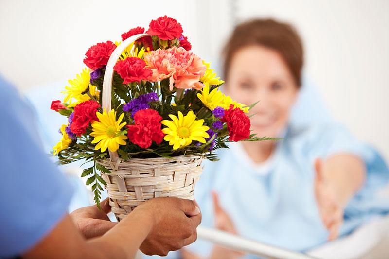 معرفی مناسبترین گل برای عیادت بیمار